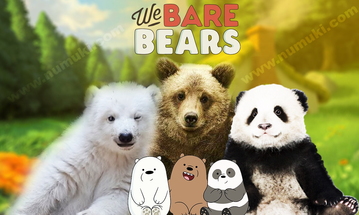 We Bare Bears Characters vs Wild Bears