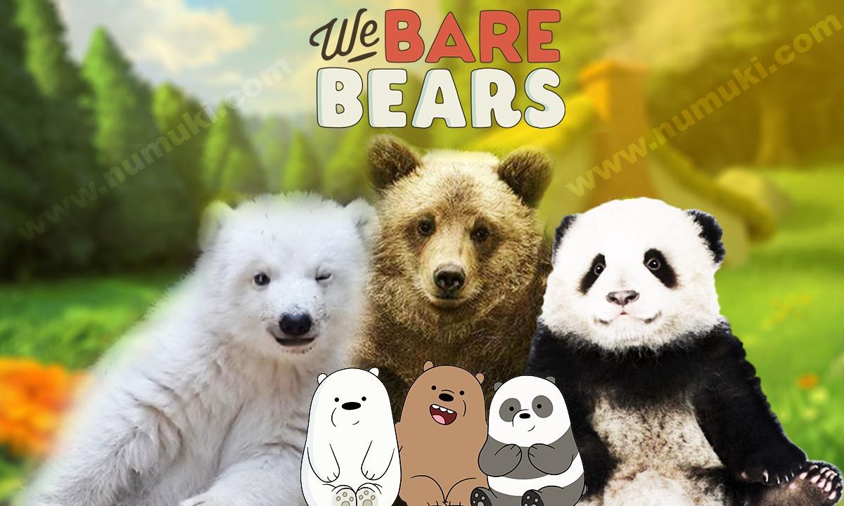 We Bare Bears Characters vs Wild Bears
